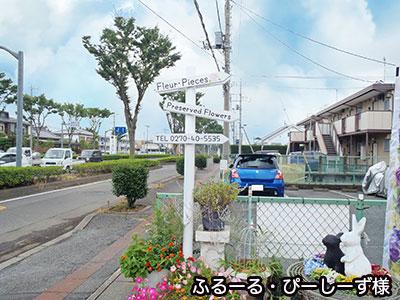 photo019-06